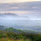 Arakwal Mist - Byron Bay by Cheryl Styles