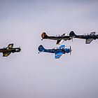 Formation Flyover by Drew Robinson