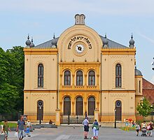The Synagogue of Pécs by Graeme  Hyde