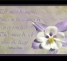 The Most beautiful Things by Julia Harwood