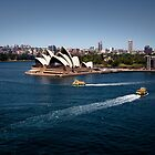 Sydney Opera House and Harbour Ferries by Andrew Wilson