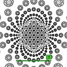 Crop Circle Metatron Vortex 22 IPHONE - Oct 2012 by VII23