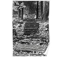 Old Stone Steps Poster