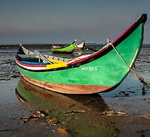 Traditional boat Portuguese by Edgar Laureano