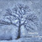 Seasons Greetings by wiscbackroadz