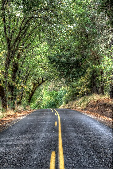 Country Road HDR by Jeannie Peters