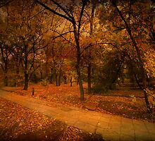 Autumn Path by Svetlana Sewell