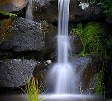 Pouring reborn by vilaro Images