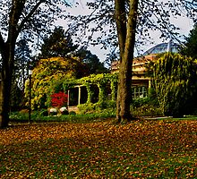 The Sun Pavilion in Autumn by Colin Metcalf