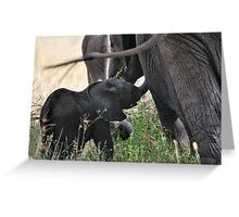 """""""Familial Bonds"""" - One Greeting Card"""