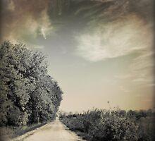 Flint Hills - Kansas by Robert Baker