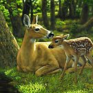 First Spring - Whitetail Deer Painting by csforest