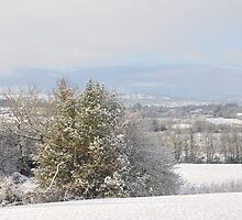 Winter in the hills of Donegal by finnvalley
