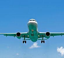 Air transportation: passenger airplane. by FER737NG