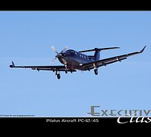 Executive Class Pilatus PC-12 by Trenton Hill