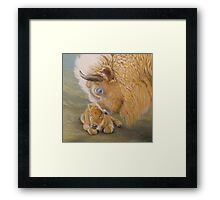 Miracle Moon & Silver Spirit - White Buffalo Framed Print