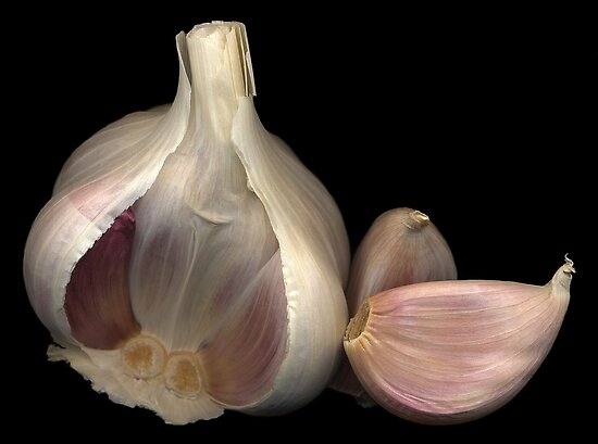 Garlic by TheWalkerTouch