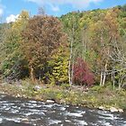 Autumn Appalacian River Rapids in West Virginia by dww25921