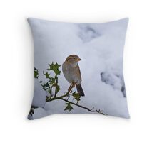 House Sparrow female in snow Throw Pillow