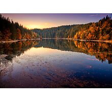 Forest Lake Photographic Print
