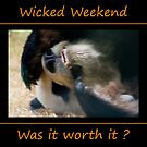 Wicked Weekend by Webitect