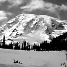 Mount Rainier by Chaney Swiney