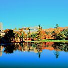 Reflection Pond by Kathleen Struckle