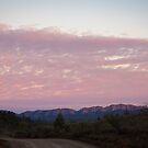Flinders Ranges by Rosie Appleton