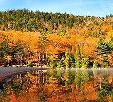 Echo Lake in the Fall by Lyana Votey