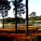 Enjoying early morning at the Legacy GC in Aberdeen, North Carolina. by Samohsong