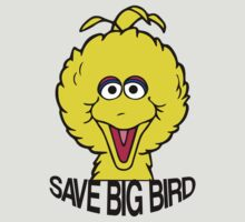 Save Big Bird by stevebluey