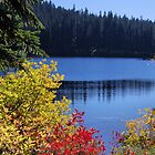 Fall at Thomas Lake  by Don Siebel