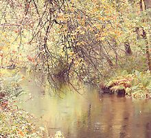 Autumn Along the Lade 2 by Rosie Nixon