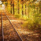 On the Edge of Autumn by SARA0608