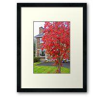 Autumn In Suburbia Framed Print