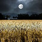 Harvest Moon by MaryWethey