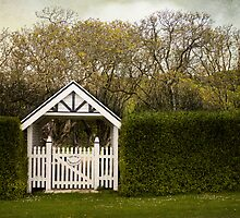 Country Garden by MaryWethey