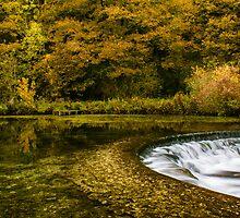Autumn on the River Lathkill  by John Dunbar