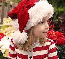 Elf by nlmead