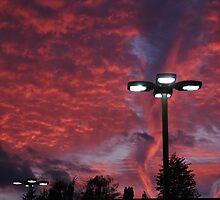 Niagara Evening Sky by Igor Shrayer