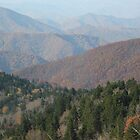 Blue Ridge Parkway- Appalachian Mountains by JeffeeArt4u