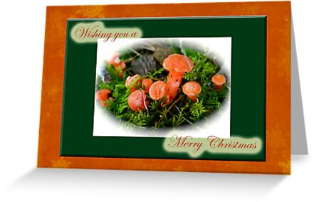Merry Christmas Greeting Card - Tiny Orange Mushrooms by MotherNature
