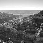 Grand Canyon National Park by Shane Moss