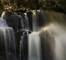 upper lilydale falls, northeast tasmania by tim buckley | bodhiimages