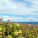 Leighton Beach Flowers - 07 10 12 by Robert Phillips