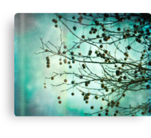 Plane Beauty Canvas Print