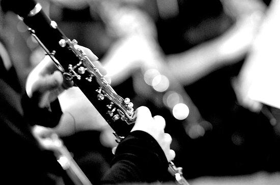 Viva la musica! by Renee Hubbard Fine Art Photography