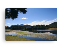 afternoon at Lake Clarrie Hall ... Canvas Print