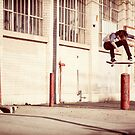 Austyn Gillette - Backside Flip - Los Angeles - Photo Aaron Smith by Reggie Destin Photo Benefit Page