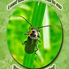 Child Kid Birthday Greeting Card - Lightning Bug by MotherNature